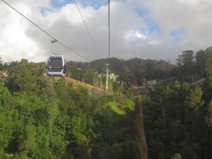 Madeira-Cable-Car