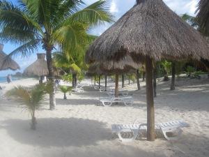 Nachi-Cocom-Cozumel-Mexico