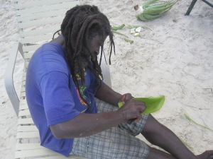 Aloe-Vera-Man-Antigua