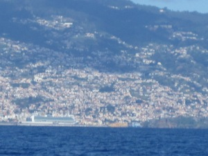 Funchal-Madeira-View