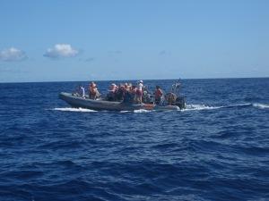 Speed-Boat-Madeira
