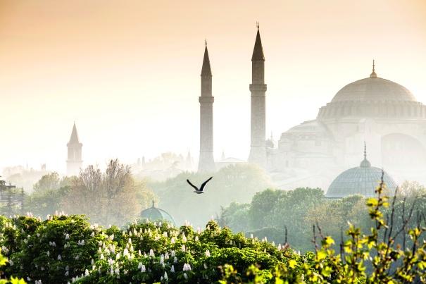 Thomson Cruises - Istanbul 1