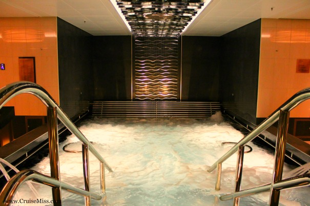 The Hydrotherapy Pool in the Spa