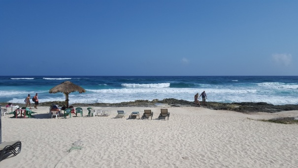 Beach-Rastas-Cozumel-Bar-Hop
