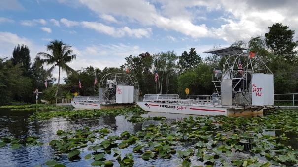 Everglades-Safari