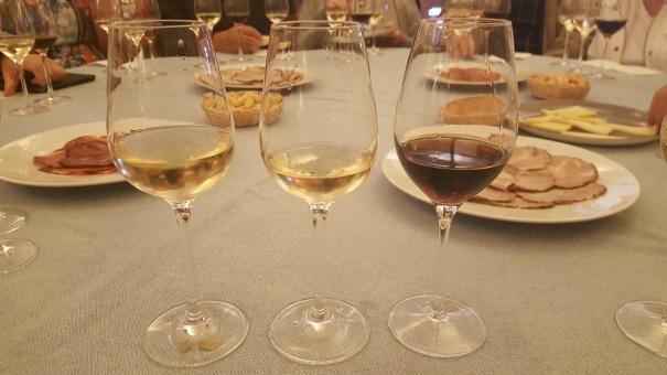 jerez-sherry-tasting-saga-cruises