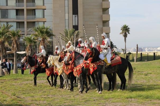 tangier-morocco-horses-saga-cruises
